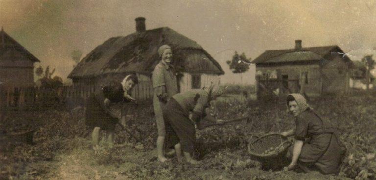 Pole Kazimiery Aniołkowskiej